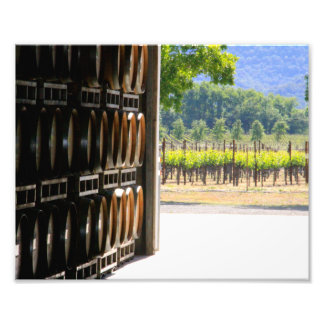 Vines to Barrel Photograph