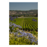 Vineyard and Purple Flowers Poster Print