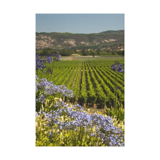 Vineyard and Purple Flowers Wrapped Canvas Print