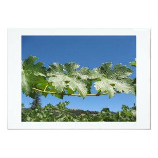 Vineyard Greeting, Invitation Card, Note Cards