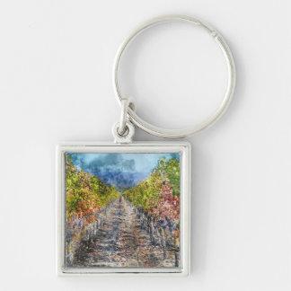 Vineyard in Autumn in Napa Valley California Key Ring