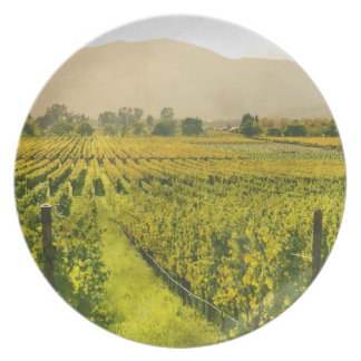 Vineyard in Autumn in Napa Valley California Plate