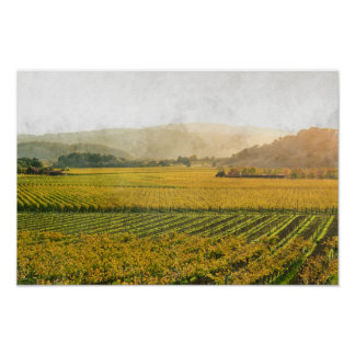 Vineyard in Autumn in Napa Valley California Poster