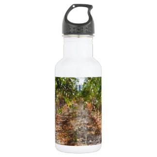 Vineyard in Napa Valley California 532 Ml Water Bottle