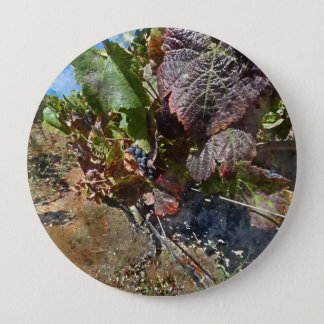 Vineyard in Napa Valley during Fall 10 Cm Round Badge