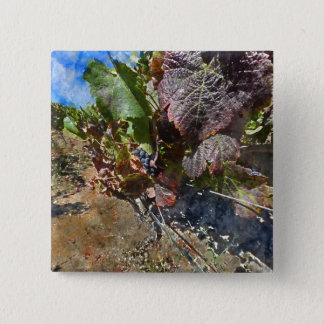 Vineyard in Napa Valley during Fall 15 Cm Square Badge