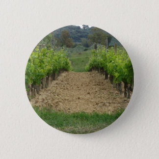 Vineyard in spring . Tuscany, Italy 6 Cm Round Badge