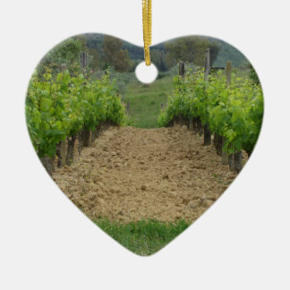 Vineyard in spring . Tuscany, Italy Ceramic Ornament