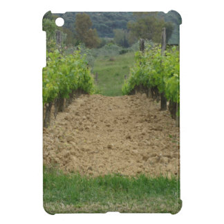 Vineyard in spring . Tuscany, Italy Cover For The iPad Mini
