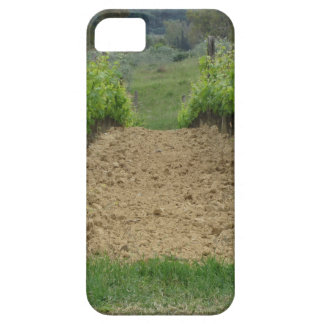 Vineyard in spring . Tuscany, Italy iPhone 5 Cover