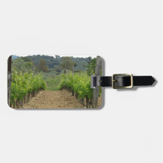 Vineyard in spring . Tuscany, Italy Luggage Tag