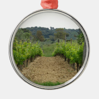 Vineyard in spring . Tuscany, Italy Metal Ornament