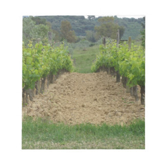 Vineyard in spring . Tuscany, Italy Notepad
