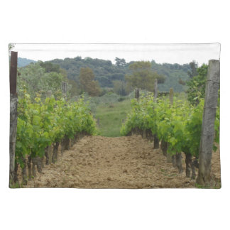 Vineyard in spring . Tuscany, Italy Placemat