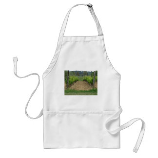 Vineyard in spring . Tuscany, Italy Standard Apron