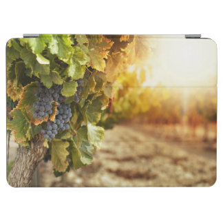 Vineyards At Sunset iPad Air Cover