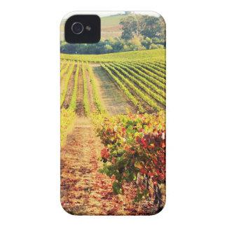 VINEYARDS.JPG Case-Mate iPhone 4 CASES