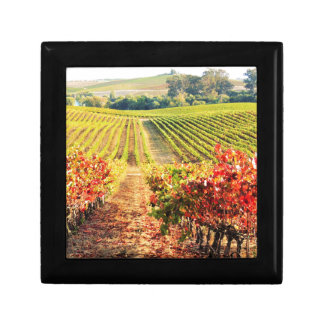 VINEYARDS.JPG GIFT BOX