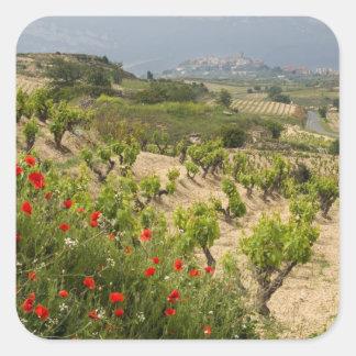 Vineyards near Laguardia, capital of La Rioja Square Sticker