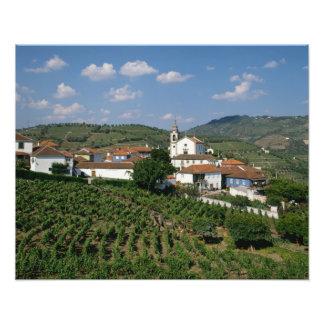 Vineyards, Village of San Miguel, Douro Art Photo