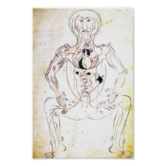 Vintage 13th Century Persian Anatomy Poster