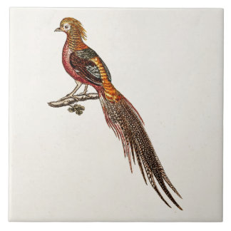 Vintage 1700s Pheasant Game Birds - Pheasant Bird Ceramic Tile