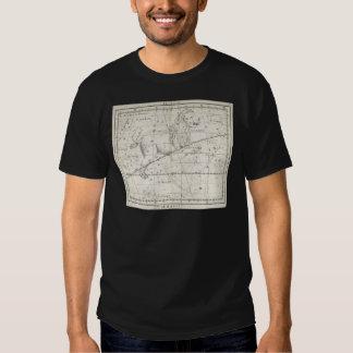 Vintage 1795 Leo star Constellation Shirts