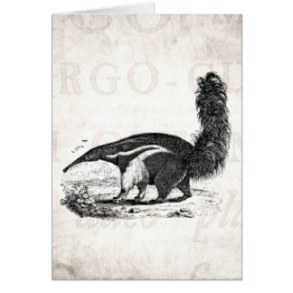 Vintage 1800s Aardvark Retro Ant Eater Template Card