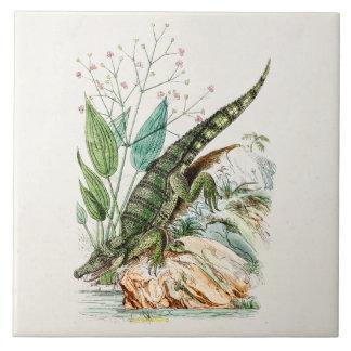 Vintage 1800s Alligator Crocodile Illustration Large Square Tile