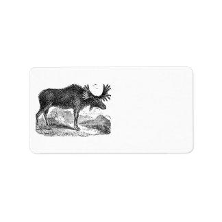 Vintage 1800s American Moose Illustration Template Address Label