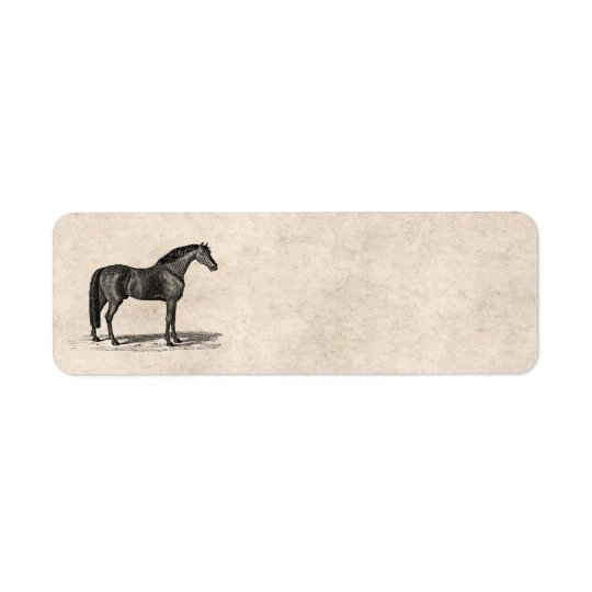 Vintage 1800s Arabian Horse Illustration - Horses Return Address Label