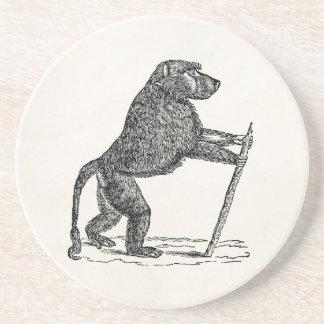 Vintage 1800s Baboon Walking Stick Monkey Baboons Beverage Coaster