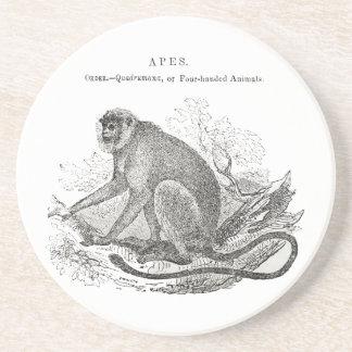 Vintage 1800s black and white monkey print coaster