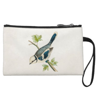 Vintage 1800s Blue Bird Songbird Birds Drawing Wristlets
