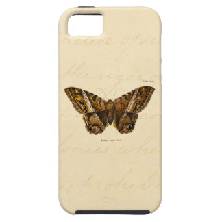 Vintage 1800s Brown Fuzzy Moth Template Butterfly iPhone 5 Cases
