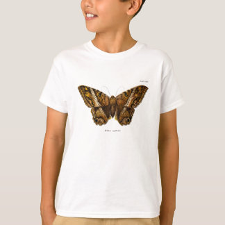 Vintage 1800s Brown Fuzzy Moth Template Butterfly T-Shirt