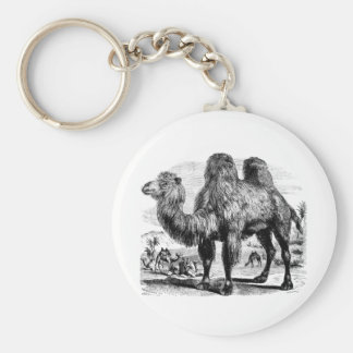 Vintage 1800s Camel -  Egyptian Camels Template Key Ring