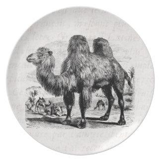 Vintage 1800s Camel -  Egyptian Camels Template Plate