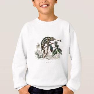 Vintage 1800s Chameleon Lizard Retro Chameleons Sweatshirt