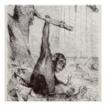 Vintage 1800s Chimpanzee Rabbit Monkey Bunny Chimp Poster