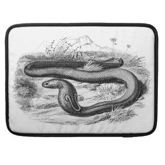 Vintage 1800s Cobra Snake Retro Cobras Drawing Sleeve For MacBook Pro