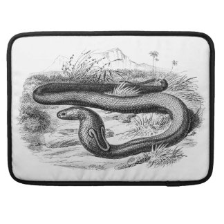 Vintage 1800s Cobra Snake Retro Cobras Drawing Sleeve For MacBooks