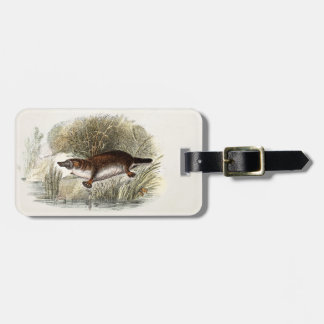 Vintage 1800s Duck Bill Platypus Illustration Luggage Tag