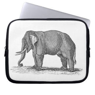 Vintage 1800s Elephant Illustration - Elephants Computer Sleeves