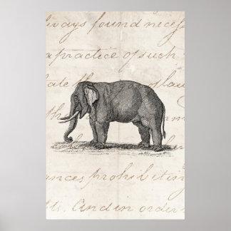 Vintage 1800s Elephant Illustration - Elephants Poster