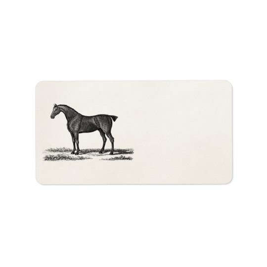 Vintage 1800s English Hunter Horse Hunting Horses Label