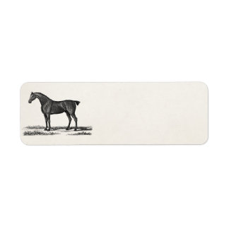 Vintage 1800s English Hunter Horse Hunting Horses Return Address Label