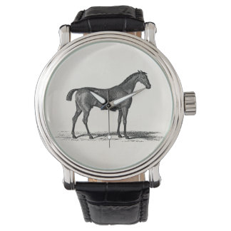 Vintage 1800s English Race Horse - Racing Horses Watch