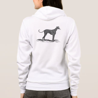 Vintage 1800s Greyhound Dog Illustration - Dogs Hoodie