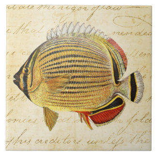 Vintage 1800s Hawaiian Butterfly Fish Illustration Large Square Tile